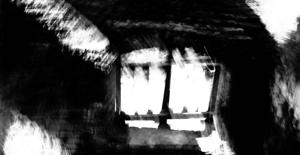 001-Layer-Blog-wifota-brigitta-hintergrund